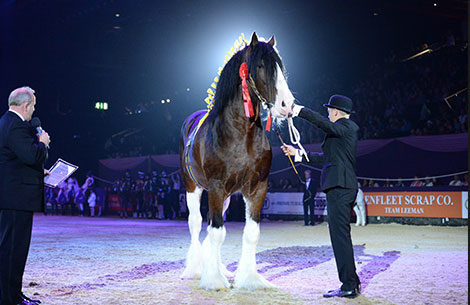 Horse Of The Year Show, Sunday 8 Oct (Evening)