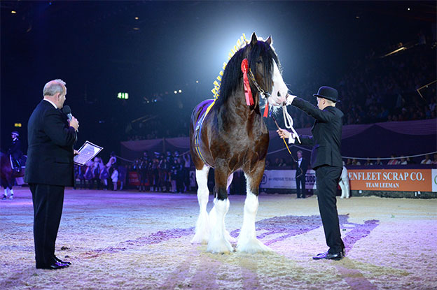 Horse Of The Year Show 2017 - Tickets