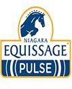 Niagara Equissage Pulse